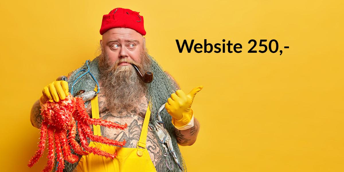 Website laten maken voor 250,-